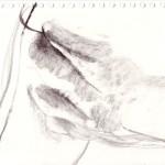 Untitled-15